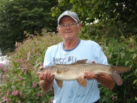One of 8 barbel for Gedd.JPG